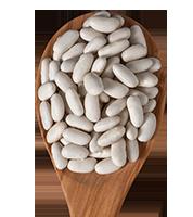 white_beans_lozano
